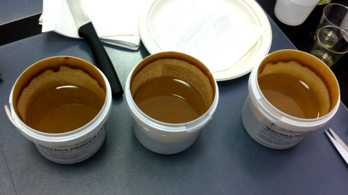 Three different versions of hazelnut paste.