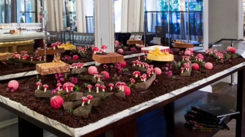 A chocolate forest for her book launch!